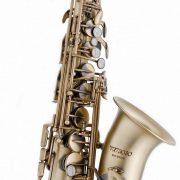 RS Berkeley's Virtuoso alto saxophone image 0