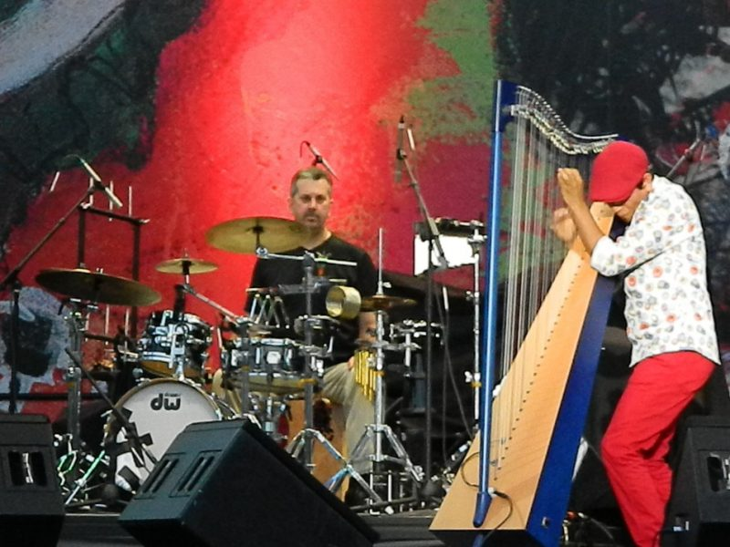 Edmar Castaneda in performance at the 2014 Puerto Rico Heineken Jazz Festival