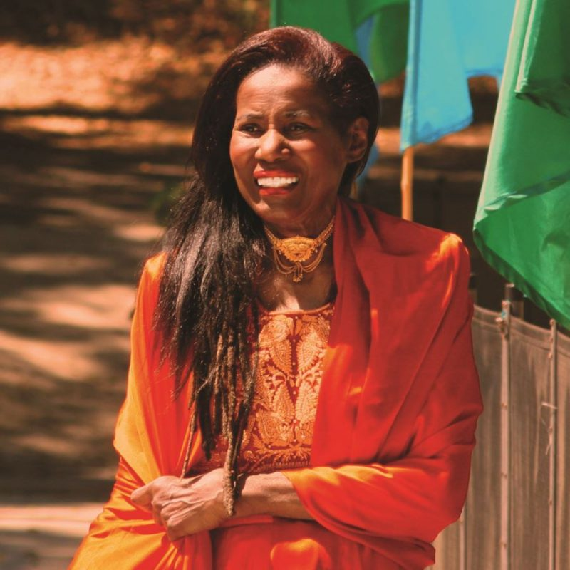 Alice Coltrane Turiyasangitananda (photo courtesy of Luaka Bop/Sri Hari Moss)