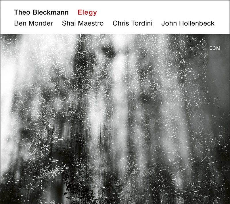 Theo Bleckmann: Elegy