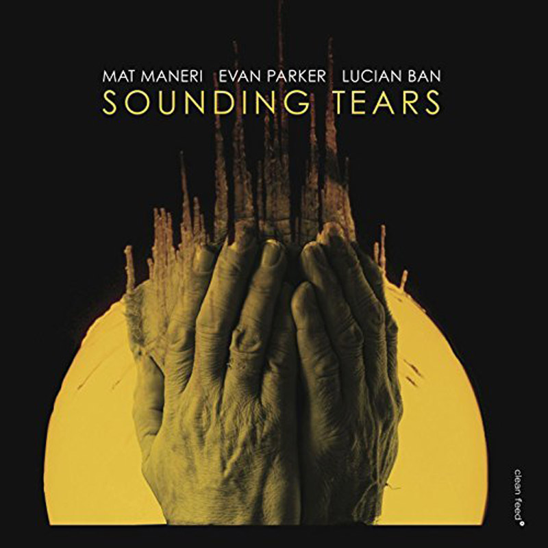 Cover of Mat Maneri album Sounding Tears