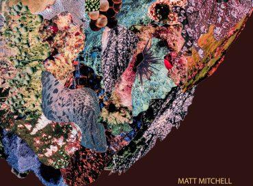 Matt Mitchell: A Pouting Grimace (Pi)