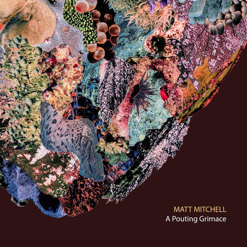 Cover of Matt Mitchell album A Pouting Grimace