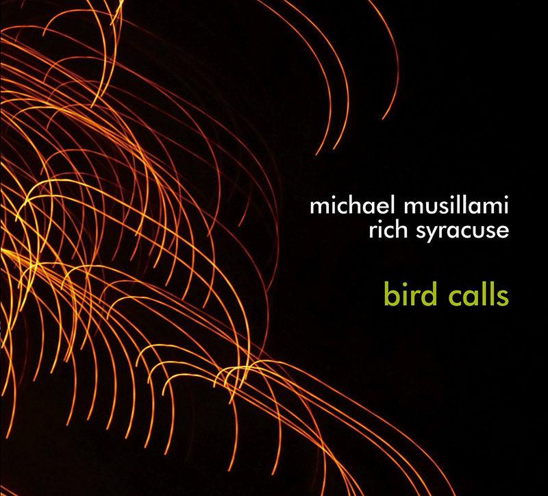 Cover of Michael Musillami & Rich Syracuse album Bird Calls
