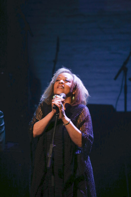 Cassandra Wilson performing at the Jazz Foundation of America 16th Annual A Great Night in Harlem Gala Concert at the Apollo in NYC (photo by Udo Salters c/o JFA)