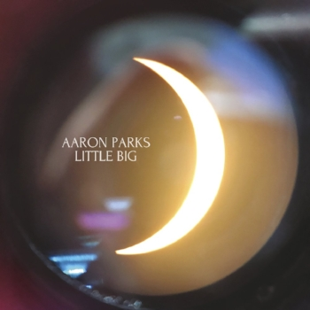 Cover of Little Big by Aaron Parks