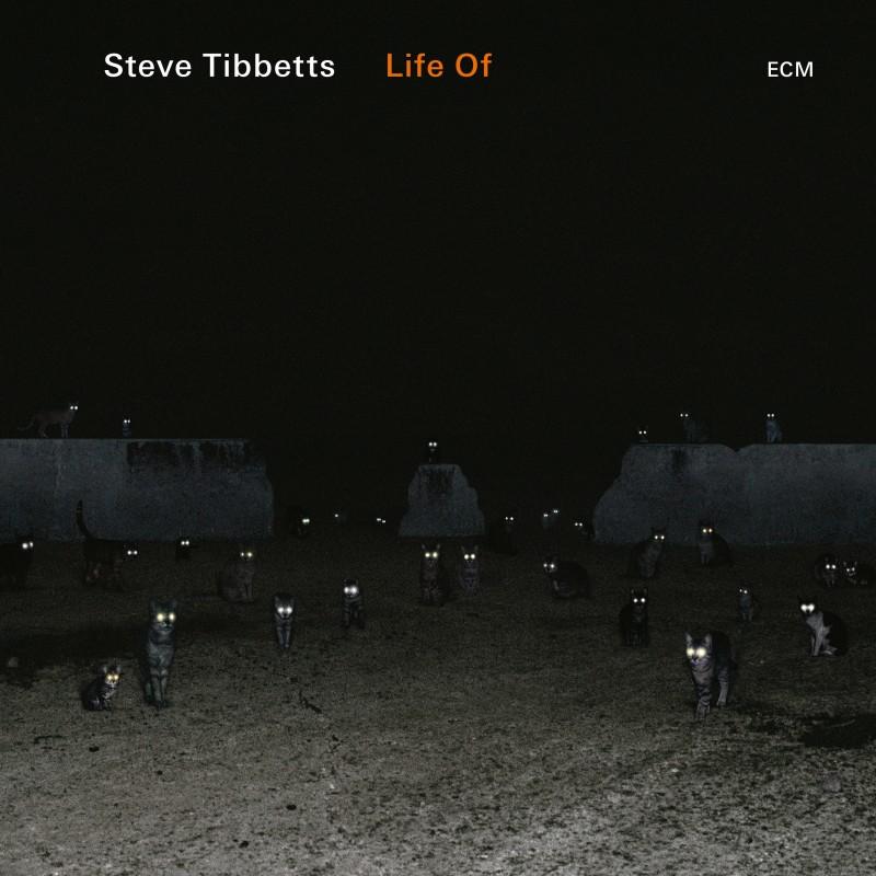 Cover of Steve Tibbetts album Life Of