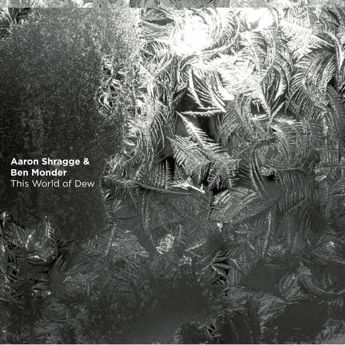 Cover of Aaron Shragge & Ben Monder album This World of Dew