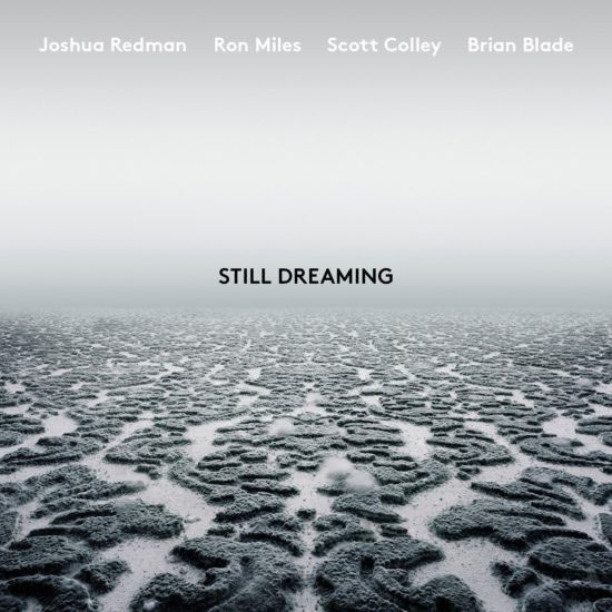 """""""Still Dreaming"""""""