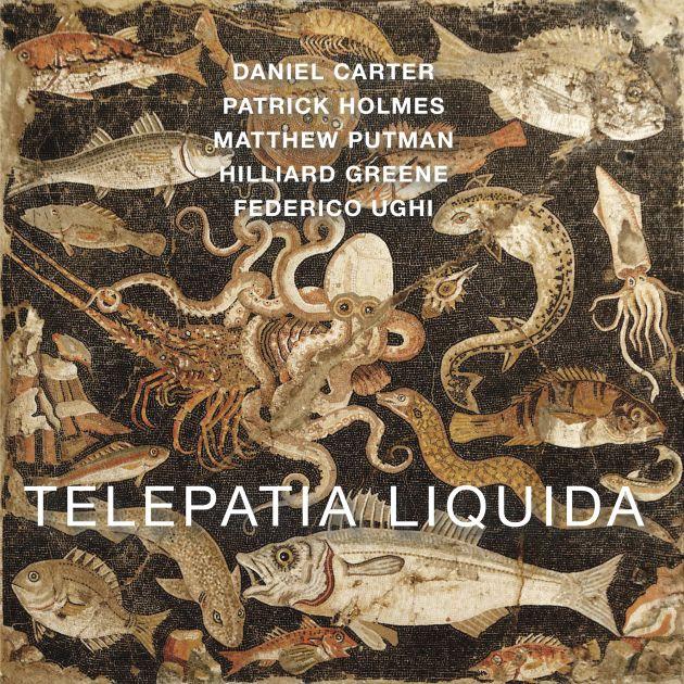 Cover of Telepatia Liquida
