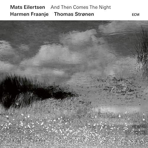 And Then Comes the Night by Mats Eilertsen