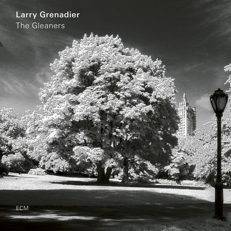 Cover of Larry Grenadier album The Gleaners