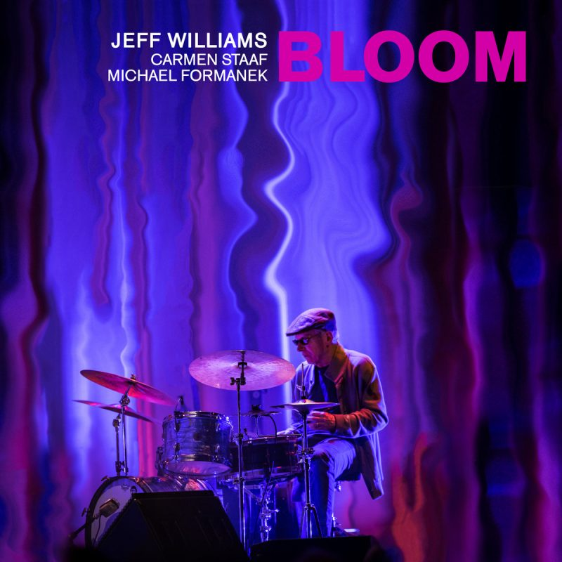 Jeff Williams, Bloom
