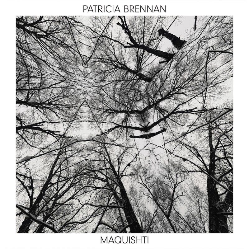 Cover of Patricia Brennan album Maquishti