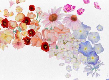 Gretchen Parlato: Flor (Edition)