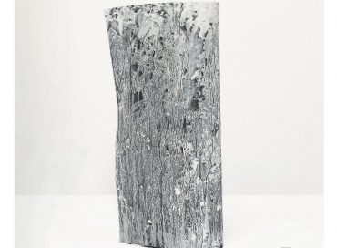 Ocelot: Ocelot (577)